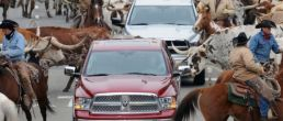 Chrysler shuts dealers, plays money games, loses value