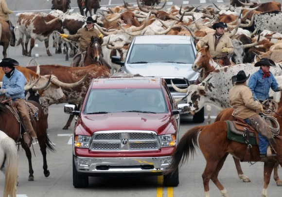 2009-dodge-ram-dodge-herd-cowboys-cattle