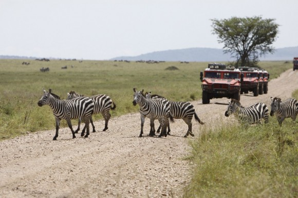 12 Renault Cape-To-Cape Expedition - Tanzania